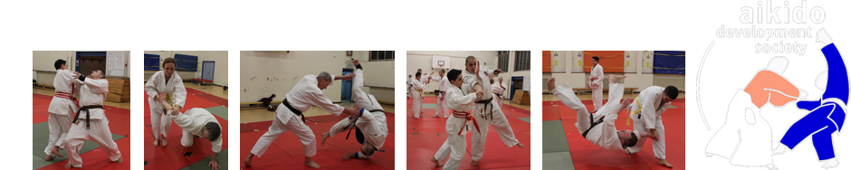 Aikido-Chingford-Banner-test-3