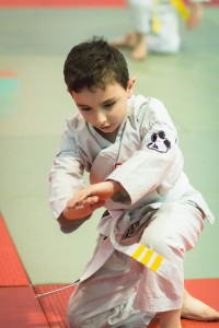 Luke Wright Aikido for Children